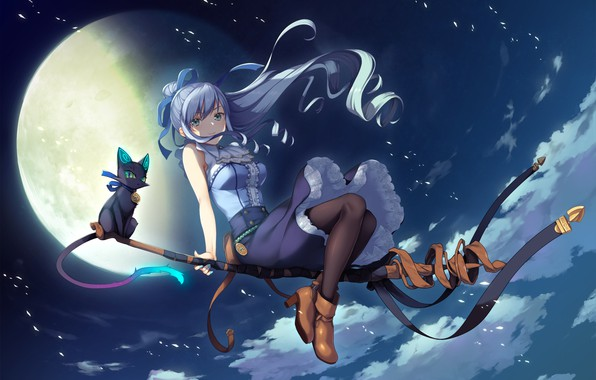 Picture cat, girl, night, the moon, witch, broom, anime, games art, Deep One