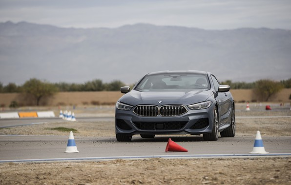 Picture coupe, BMW, on the track, 2018, gray-blue, 8-Series, 2019, M850i xDrive, Eight, G15