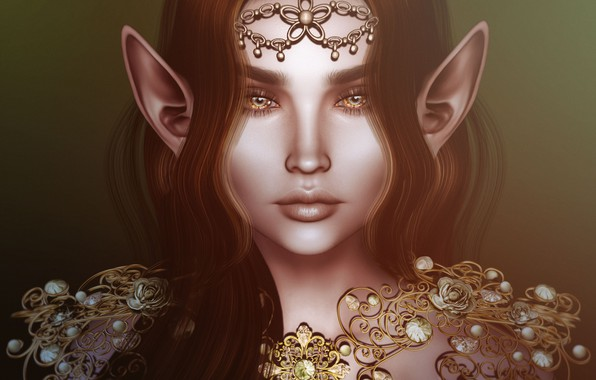 Picture girl, decoration, hair, elf, ears