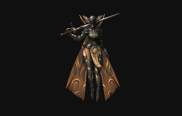 Picture Girl, Fantasy, Art, Style, Illustration, Minimalism, Sword, Armor, Figure, Character, ilsu jang, Moth knight