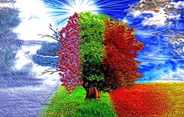 Picture abstraction, rendering, fantasy, tree, seasons, art, winter-spring-summer-autumn