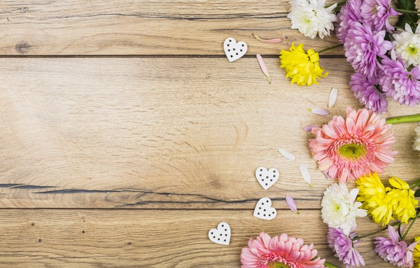 Picture flowers, colorful, hearts, chrysanthemum, wood, pink, flowers, romantic, hearts, spring, violet