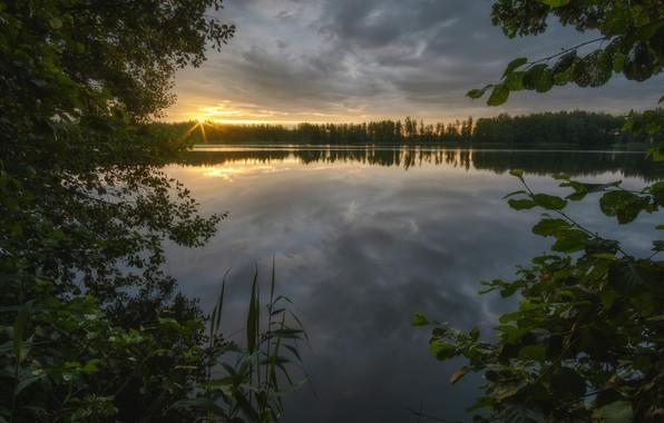 Picture the sun, trees, river, dawn