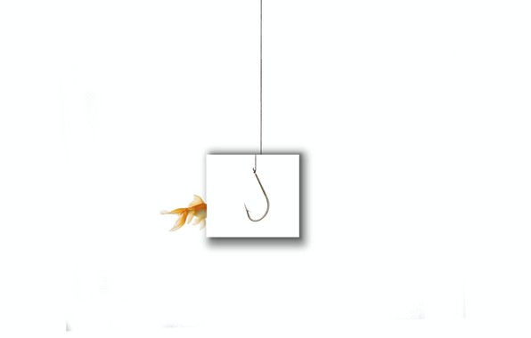 Picture background, fish, hook