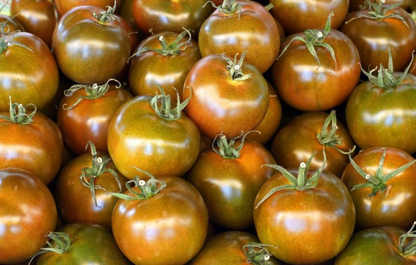 Picture Shine, food, harvest, orange, vegetables, tomatoes, a lot, tomatoes, Golden, tomatoes