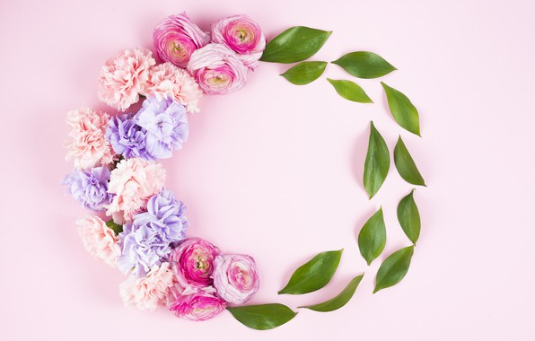 Picture leaves, flowers, background, pink, roses, buds, fresh, pink, flowers, composition, roses, violet, clove