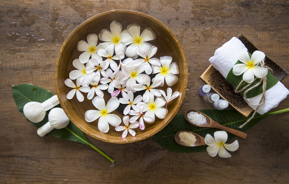 Picture water, flowers, plumeria, Spa