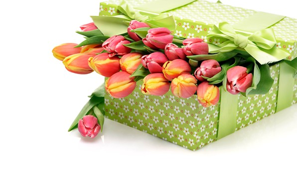 Wallpaper box, gift, bouquet, tulips, bow