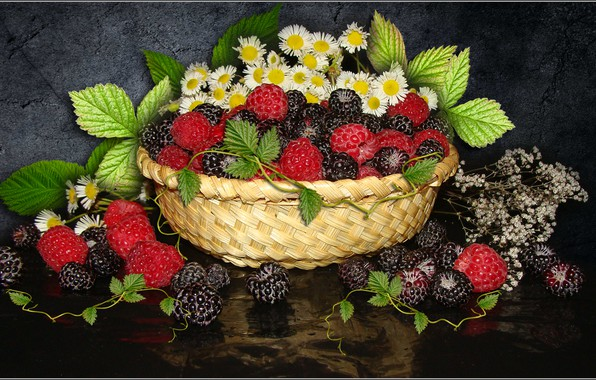 Picture flowers, raspberry, chamomile, berry, still life, BlackBerry, the Wallpapers, photo Elena Anikina