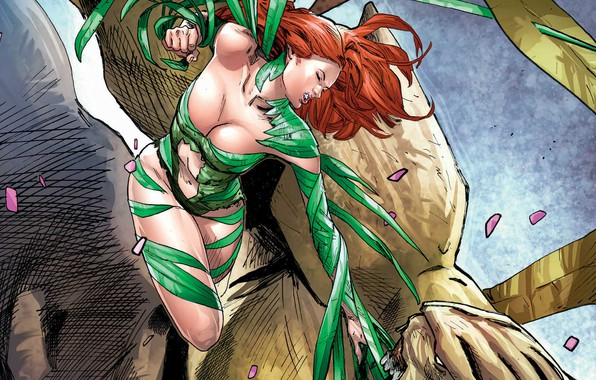 Picture girl, fantasy, cleavage, breast, comics, redhead, artwork, superhero, costume, fantasy art, DC Comics, chest, Poison …
