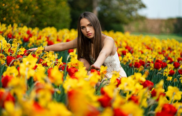 Picture look, trees, flowers, model, skirt, portrait, makeup, hairstyle, brown hair, topic, beauty, in white, nature, …
