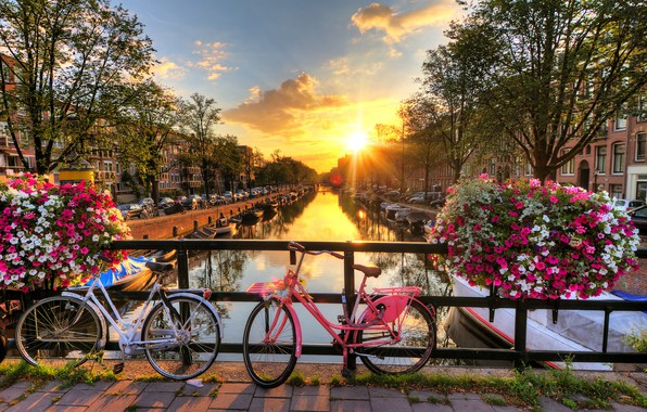 Picture rays, sunset, flowers, machine, bridge, the city, home, boats, the evening, Amsterdam, channel, Netherlands, bikes, …