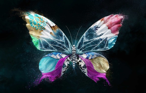 Picture bright colors, flight, butterfly, wings, insect, flight, wings, butterfly, 3D graphics, insect, bright colors, 3D …