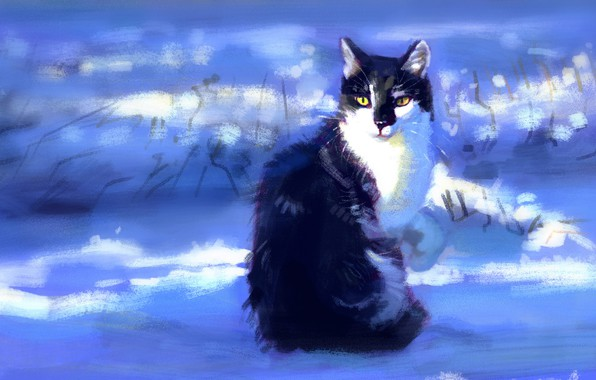 Wallpaper Winter Cat Snow Sitting By Meorow Images For