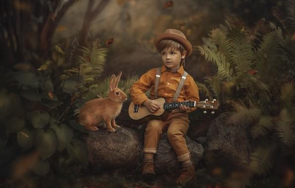 Picture forest, nature, stones, animal, vegetation, guitar, boy, rabbit, child, Jansone Dace
