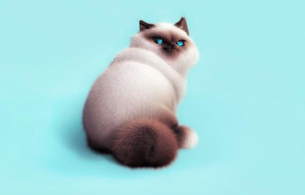 Picture cat, character, mood, art, pussy, Oksana Cherry, Meow)