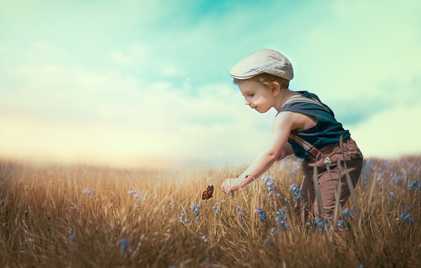 Picture field, summer, boy
