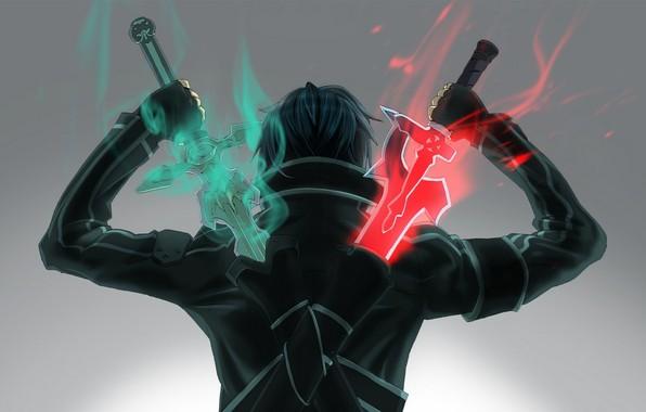 Picture hero, swords, Sword Art Online, from the back, gets