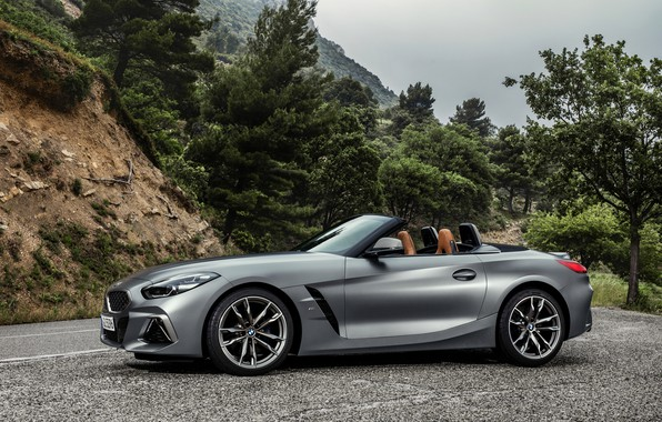 Picture trees, grey, BMW, Parking, Roadster, BMW Z4, M40i, Z4, 2019, G29