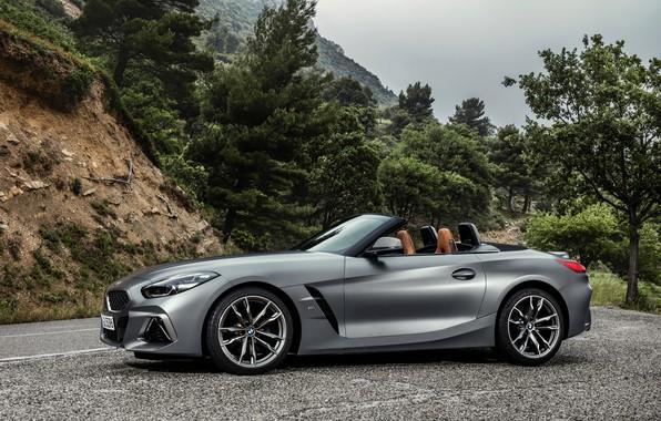 Picture trees, grey, BMW, Parking, Roadster, BMW Z4, M40i, Z4, 2019, G29