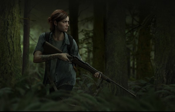 Picture Game, Naughty Dog, The Last of Us Part II