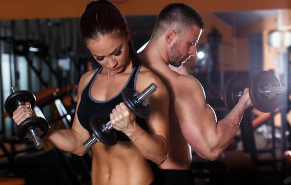 Picture pose, two, muscle, muscle, training, biceps, fitness, gym, training, weight, Gym, dumbbells, biceps, bodybuilder, gym