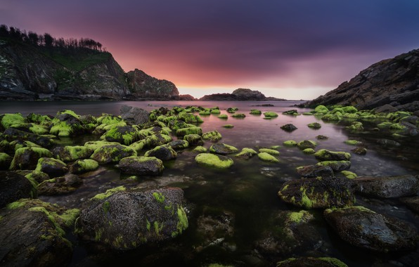 Picture sea, clouds, algae, sunset, mountains, stones, rocks, shore, the evening, green, Bay, Spain