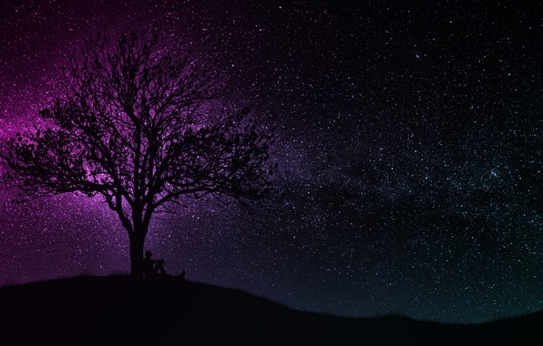 Picture dark, wallpaper, black, art, tree, man, hill, purple, silhouette, starry sky, miscellaneous, 4k uhd background