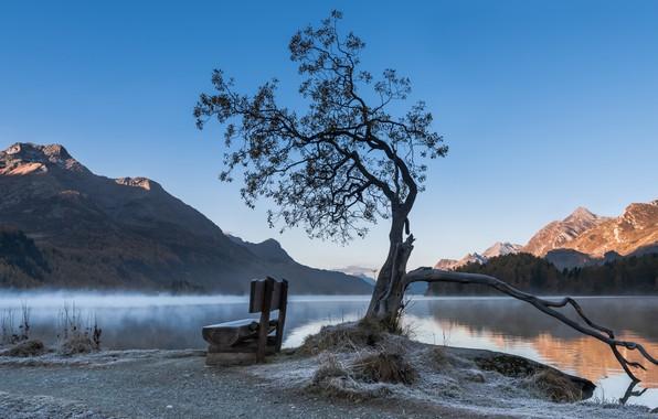 Picture fog, lake, morning, bench