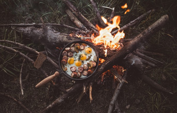 Picture wallpaper, fire, nature, food, background, branches, camping, sticks, bonfire, logs, pine cones, fried eggs, 4k …
