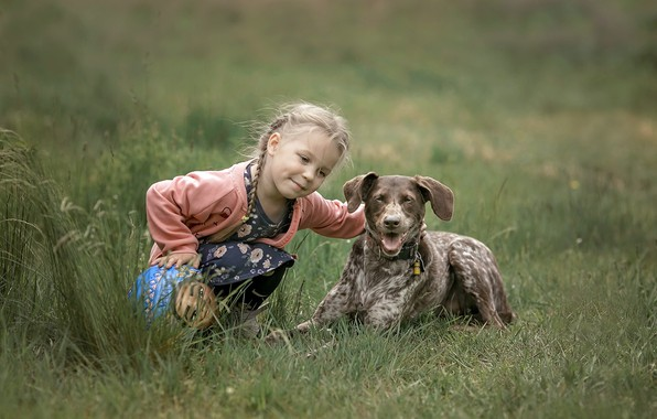 Picture summer, dog, girl