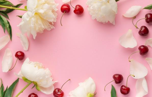 Picture flowers, cherry, berries, peonies