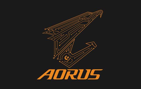 Picture logo, eagle, gigabyte, aorus