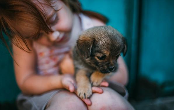 Picture baby, girl, puppy, friends, doggie, Darya Shevchenko