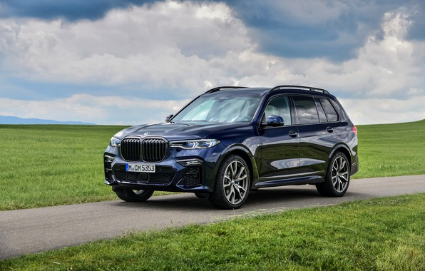 Picture lawn, BMW, crossover, SUV, 2020, BMW X7, M50i, X7, G07