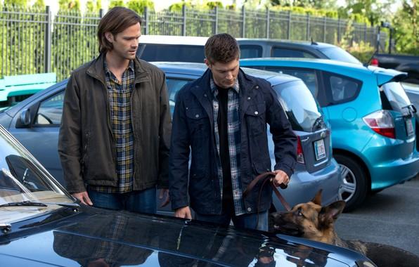 Picture the series, Supernatural, Supernatural, Sam, Dean, Jared Padalecki, Jensen Ackles