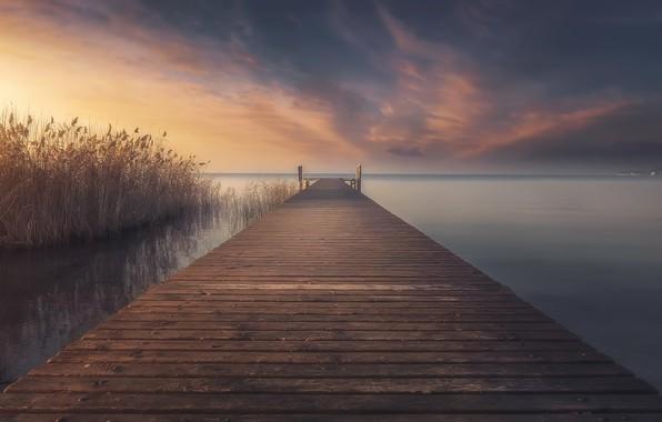 Picture bridge, lake, reed
