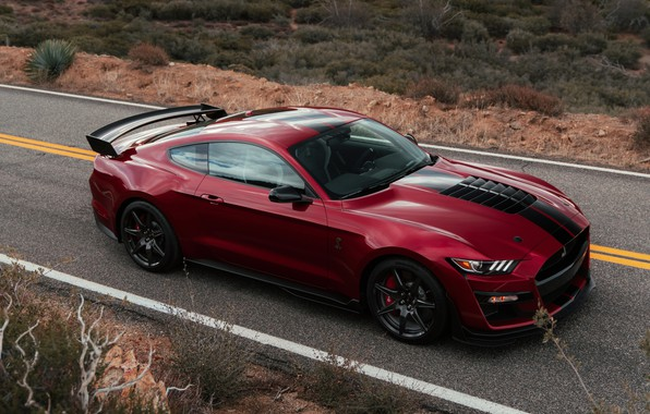 Picture road, machine, asphalt, strips, red, style, markup, coupe, spoiler, Ford Mustang Shelby GT500