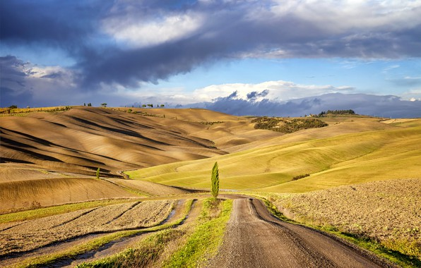 Picture Tuscany, Italy, Val d'orcia
