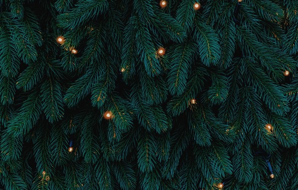 Picture lights, Christmas, New year, tree, garland, holidays