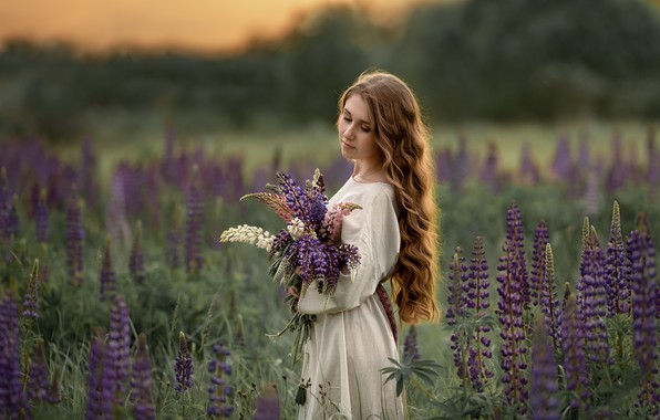 Picture field, summer, girl, flowers, nature, bouquet, dress, brown hair, curls, lupins, Соловьёва Елена
