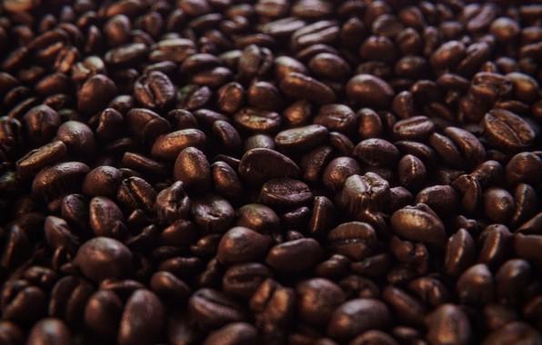 Picture Macro, Grain, Coffee, Art, Coffee, Coffee beans, Uddhav Vegad