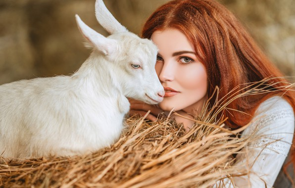 Picture look, girl, face, hay, red, redhead, goat, goat, Диана Липкина