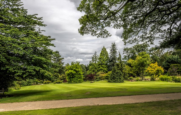 Picture greens, grass, clouds, trees, Park, lawn, garden, track, UK, the bushes, Garden Harlow Carr