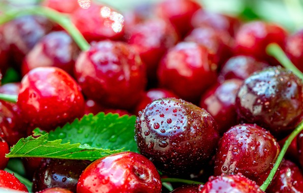 Picture drops, macro, cherry, berries, leaf, blur, red, fruit, wet, a lot, cherry, bokeh, ripe