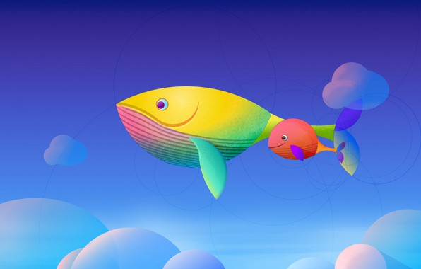 Picture the sky, clouds, fish, kit