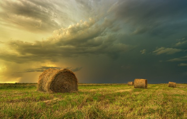 Picture field, landscape, clouds, nature, beauty, hay, bales