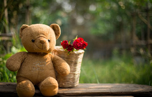 Picture love, flowers, gift, toy, heart, roses, bear, red, love, bear, heart, wood, flowers, romantic, teddy, ...