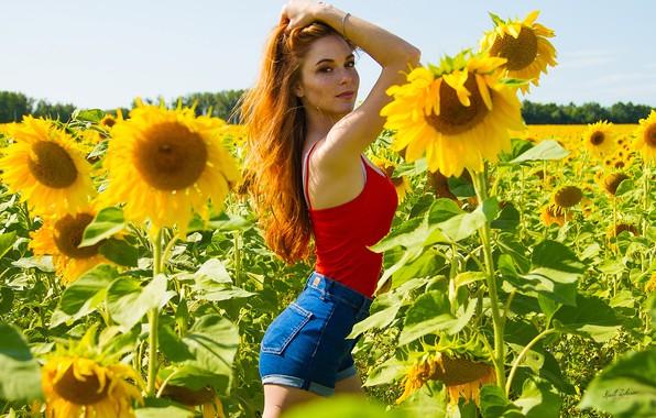 Wallpaper Field, Summer, Look, Girl, Sunflowers, Pose -4916