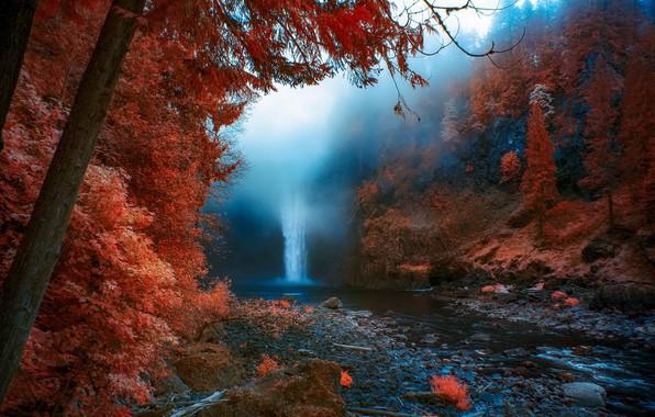 Picture autumn, nature, fog, waterfall, United States, Washington, Snoqualmie Falls